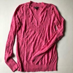 Express deep V sweater